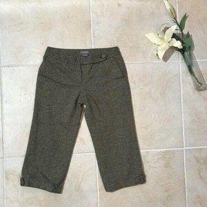 Ann Taylor Gray Cropped Capri Pants 4P 62